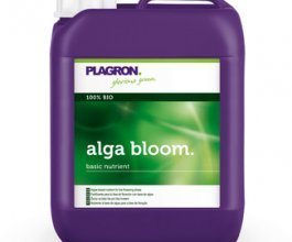 Plagron Alga Bloom, 5L