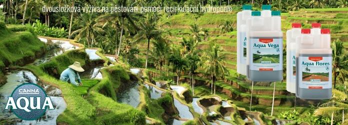Canna Aqua, pěstování v NFT a dalších recirkulačních systémech