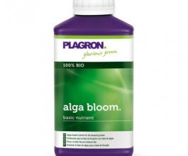 Plagron Alga Bloom, 250ml