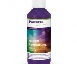 Plagron Green Sensation, 100ml